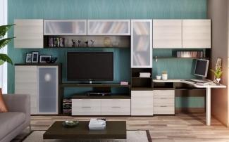 мебель в гостиную с тв тумбой и рабочим столомна заказ fabie