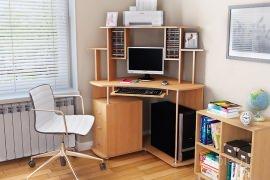 Компьютерный стол №110