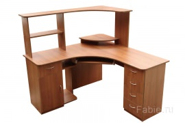Компьютерный стол №20